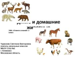 Дикие и домашние животные УМК «Планета знаний» 3 класс Чуранова Светлана Викт