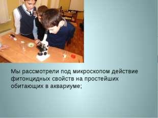 Мы рассмотрели под микроскопом действие фитонцидных свойств на простейших оби
