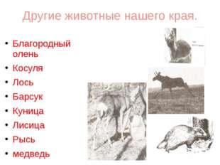 Другие животные нашего края. Благородный олень Косуля Лось Барсук Куница Лиси