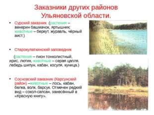 Заказники других районов Ульяновской области. Сурский заказник (растения – ве