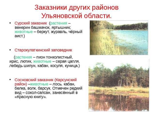 Заказники других районов Ульяновской области. Сурский заказник (растения – ве...