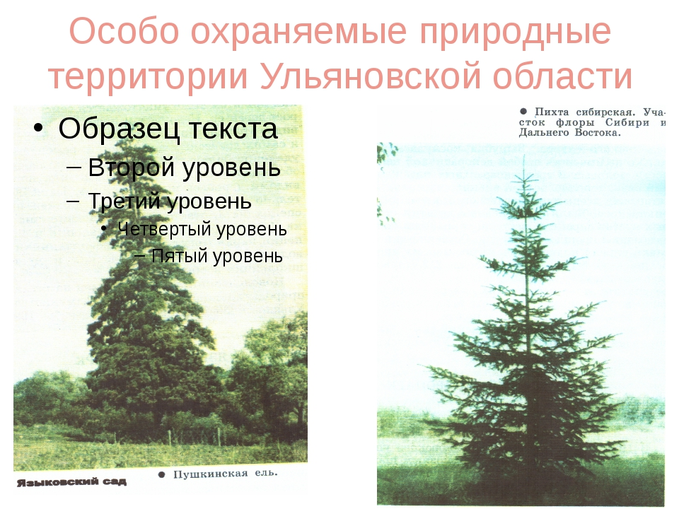 Особо охраняемые природные территории Ульяновской области