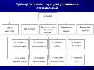 Пример плоской структуры управления организацией