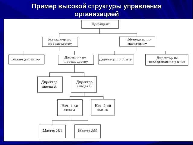 Пример высокой структуры управления организацией