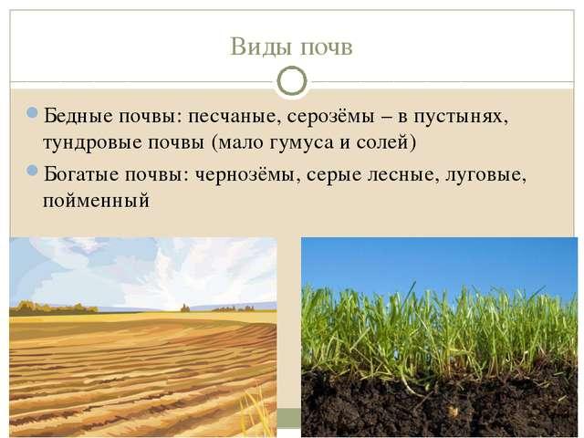 Виды почв Бедные почвы: песчаные, серозёмы – в пустынях, тундровые почвы (мал...