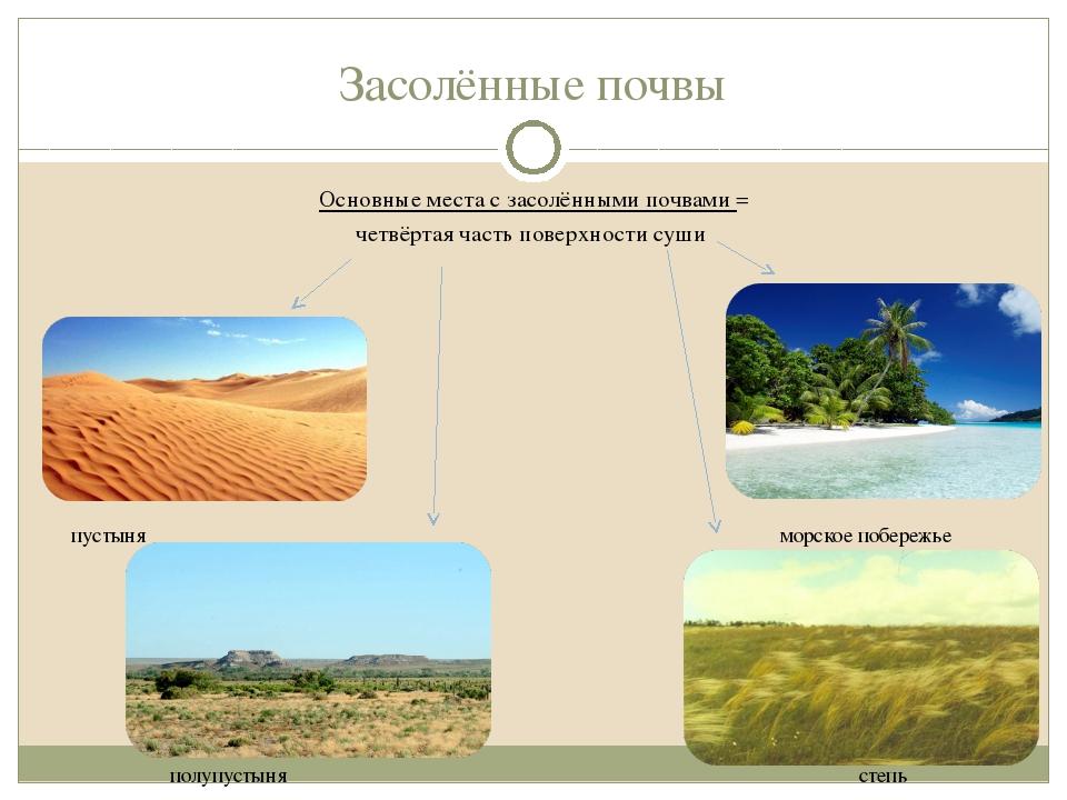 Засолённые почвы Основные места с засолёнными почвами = четвёртая часть повер...