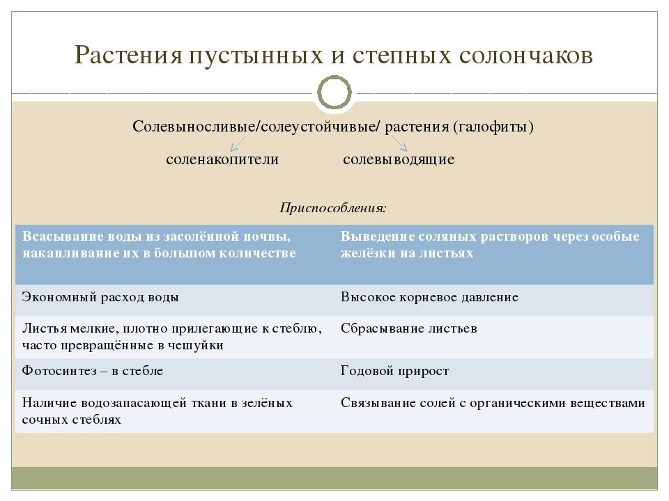 Растения пустынных и степных солончаков Солевыносливые/солеустойчивые/ растен...