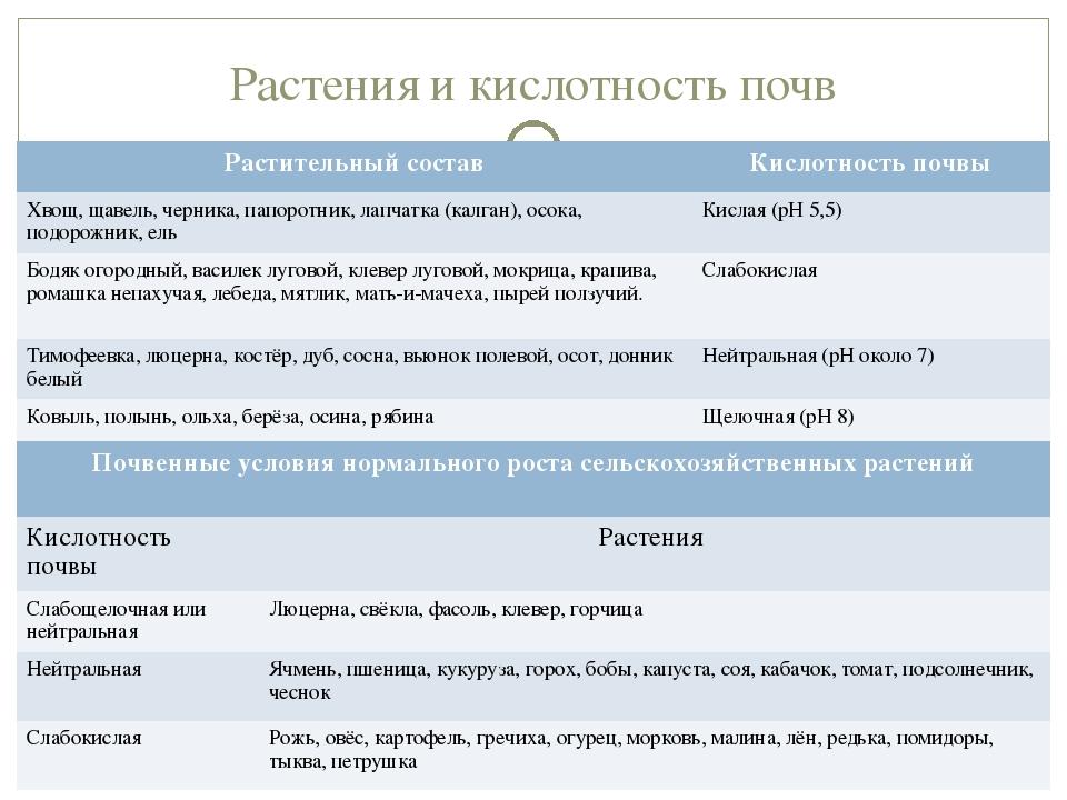 Растения и кислотность почв Растительный составКислотность почвы Хвощ, щавел...