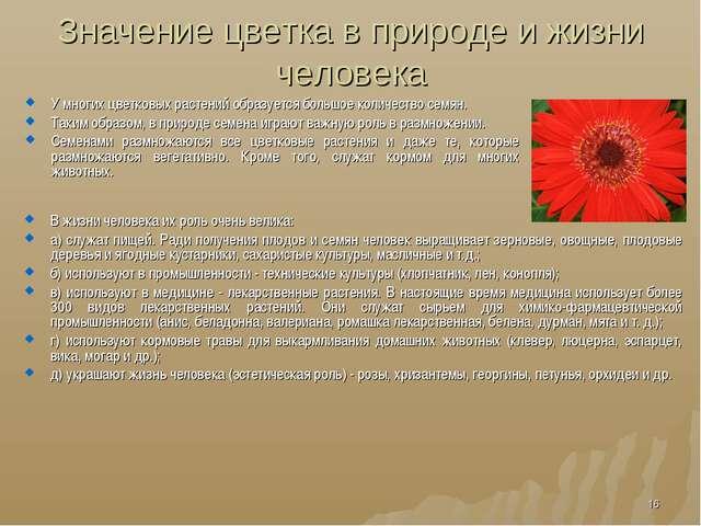 Значение цветка в природе и жизни человека У многих цветковых растений образу...