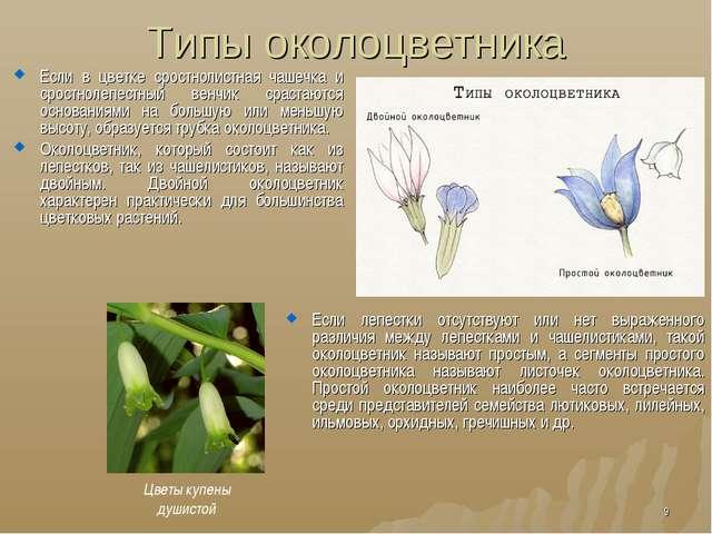 Типы околоцветника Если в цветке сростнолистная чашечка и сростнолепестный ве...