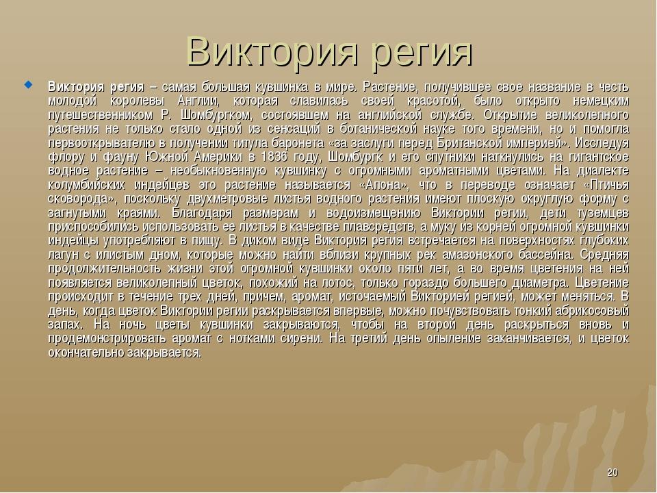 Виктория регия Виктория регия – самая большая кувшинка в мире. Растение, полу...