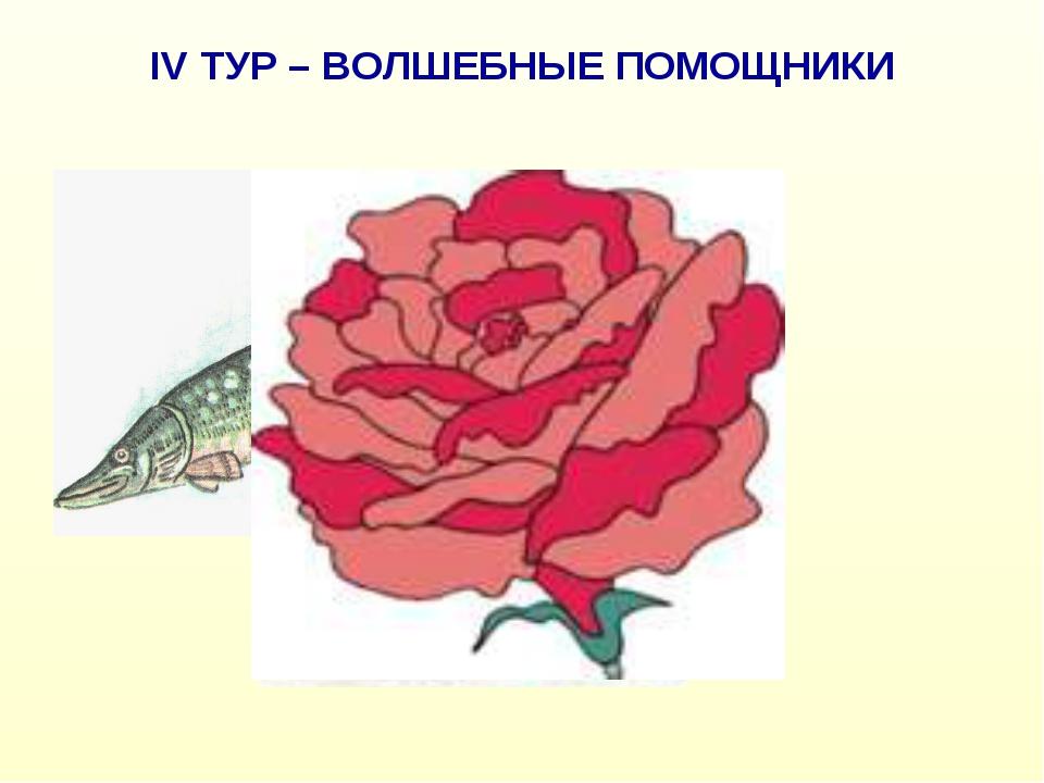 IV ТУР – ВОЛШЕБНЫЕ ПОМОЩНИКИ