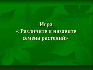 Игра « Различите и назовите семена растений»