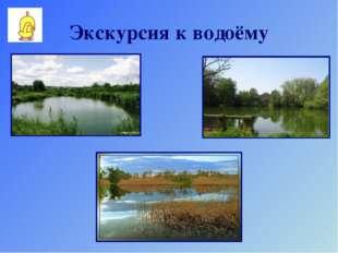 Экскурсия к водоёму