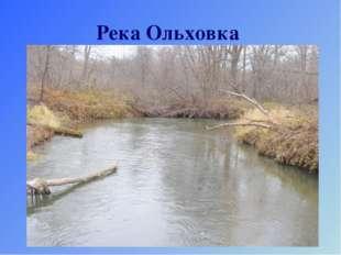 Река Ольховка