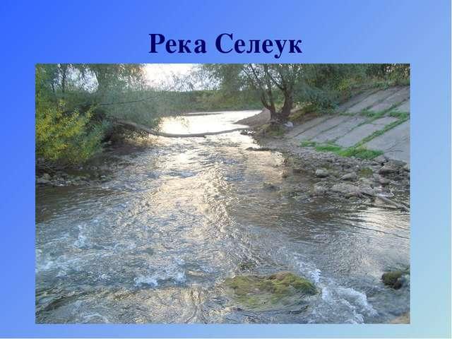 Река Селеук