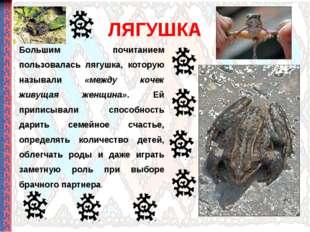 ЛЯГУШКА Большим почитанием пользовалась лягушка, которую называли «между коче