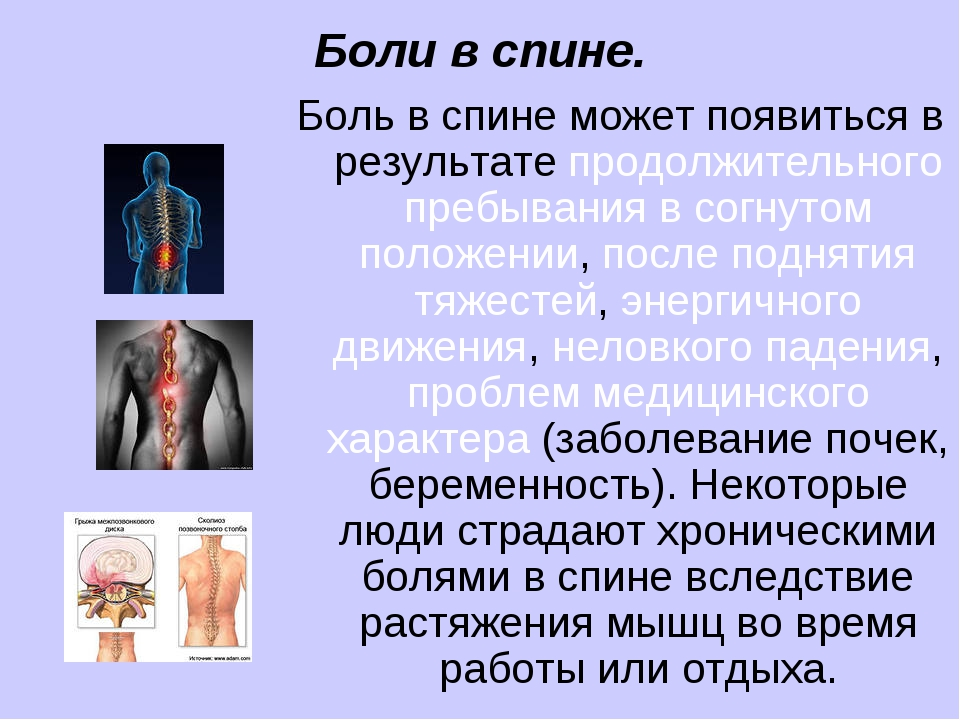 Боли в спине. Боль в спине может появиться в результате продолжительного преб...