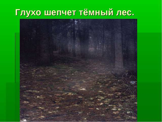 Глухо шепчет тёмный лес.