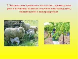 3. Западная зона орошаемого земледелия с производством риса и интенсивно разв