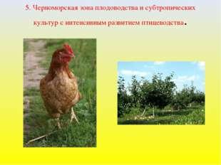 5. Черноморская зона плодоводства и субтропических культур с интенсивным разв