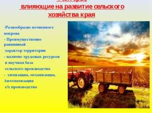 Факторы, влияющие на развитие сельского хозяйства края - Разнообразие почвенн