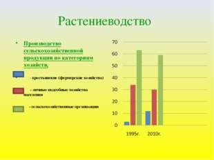 Растениеводство Производство сельскохозяйственной продукции по категориям хоз