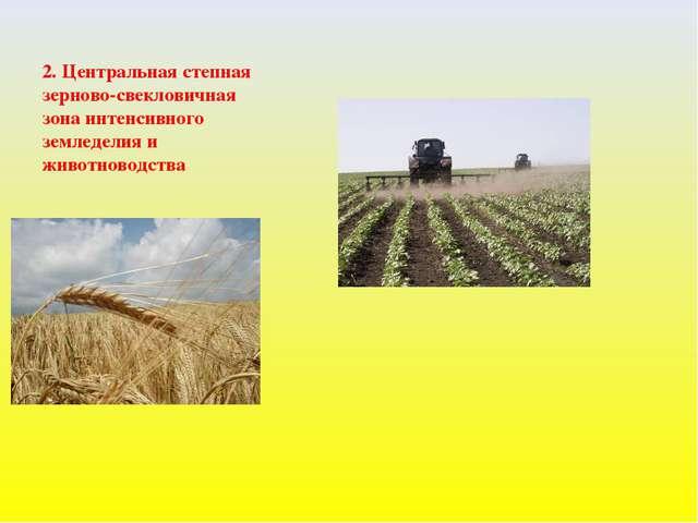 2. Центральная степная зерново-свекловичная зона интенсивного земледелия и жи...