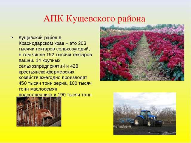 АПК Кущевского района Кущёвский район в Краснодарском крае – это 203 тысячи г...