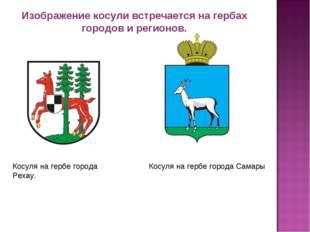 Изображение косули встречается на гербах городов и регионов. Косуля на гербе