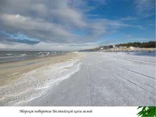 Берег Самбийского полуострова близ Светлогорска Морское побережье Балтийской