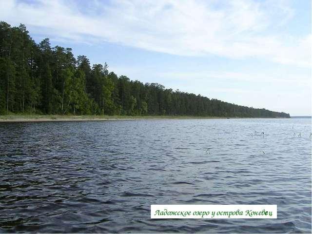 РекаОредеж— притокЛуги Ладожское озероу островаКоневец