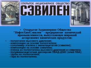 """Открытое Акционерное Общество """"НефтеХимСэвилен"""" - предприятие химической про"""