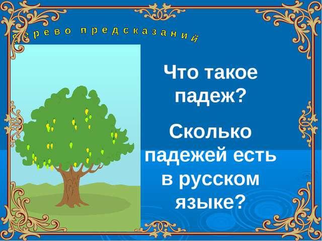 Что такое падеж? Сколько падежей есть в русском языке?