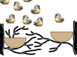 Рассадите птичек в два гнезда поровну.