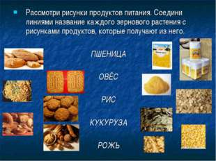 Рассмотри рисунки продуктов питания. Соедини линиями название каждого зерново
