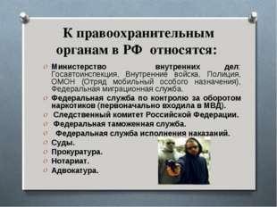 К правоохранительным органам в РФ относятся: Министерство внутренних дел: Гос