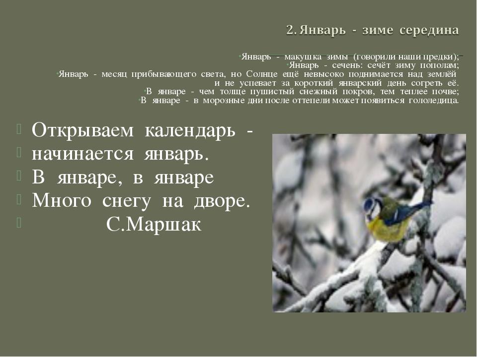 Январь - макушка зимы (говорили наши предки); Январь - сечень: сечёт зиму по...