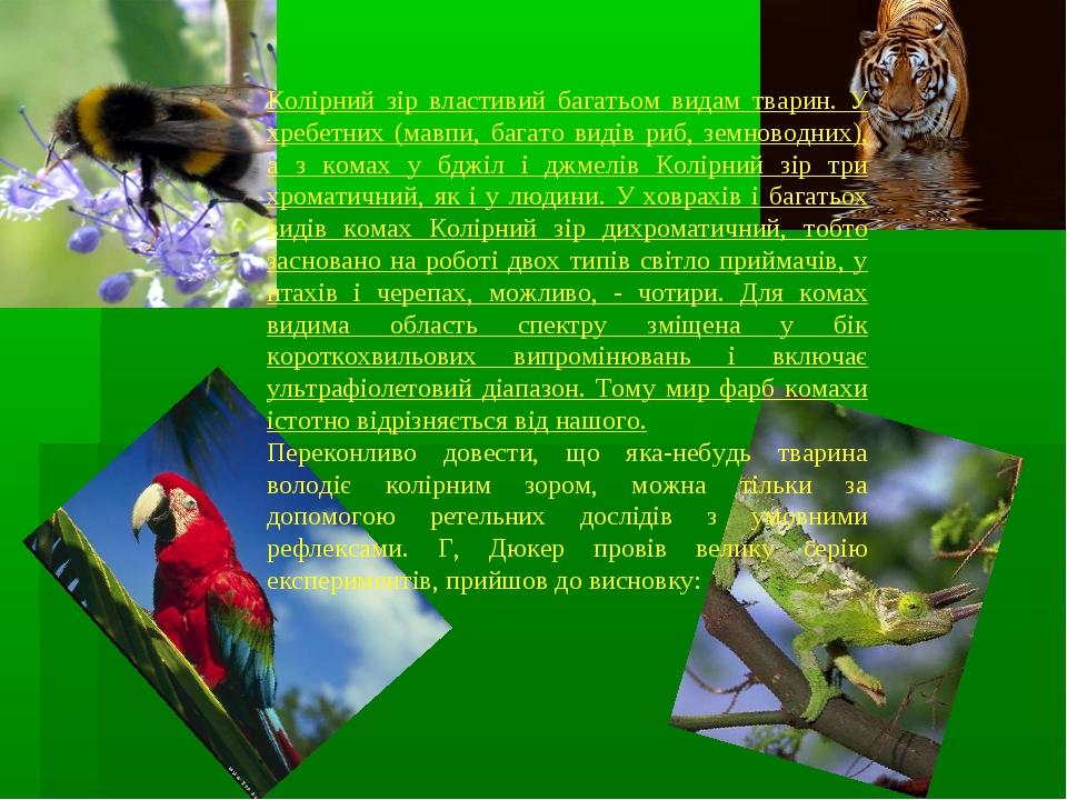 Колірний зір властивий багатьом видам тварин. У хребетних (мавпи, багато виді...