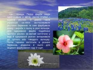 Це правда. Перші фарби люди одер-жували з квітів, листя, стебел і коренів рос