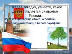 Отгадав загадку, узнаете, какое дерево является символом России. Русская крас