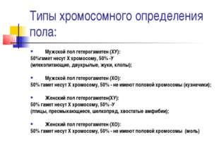 Типы хромосомного определения пола: Мужской пол гетерогаметен (ХУ): 50%гамет