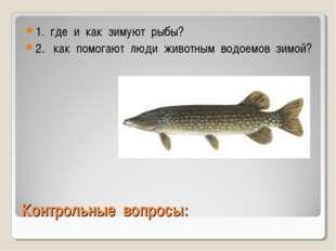 Контрольные вопросы: 1. где и как зимуют рыбы? 2. как помогают люди животным