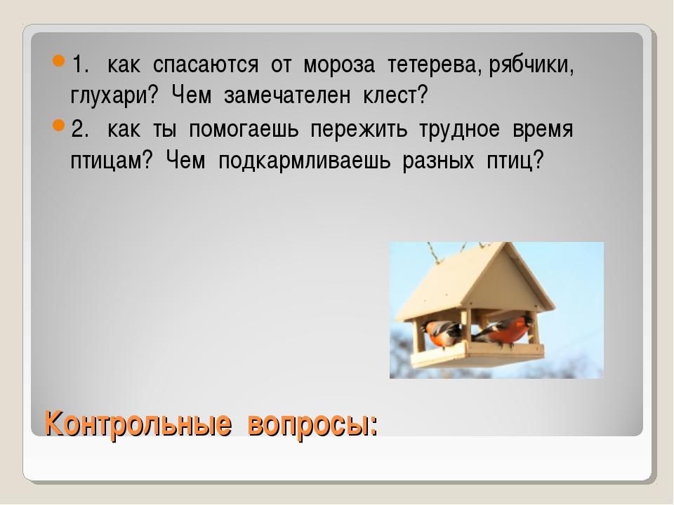 Контрольные вопросы: 1. как спасаются от мороза тетерева, рябчики, глухари? Ч...
