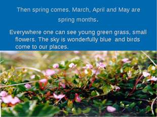 Then spring comes. March, April and May are spring months. Everywhere one can
