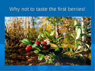 Why not to taste the first berries!