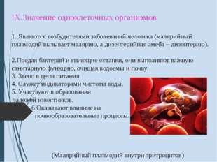 IX.Значение одноклеточных организмов 1. Являются возбудителями заболеваний ч