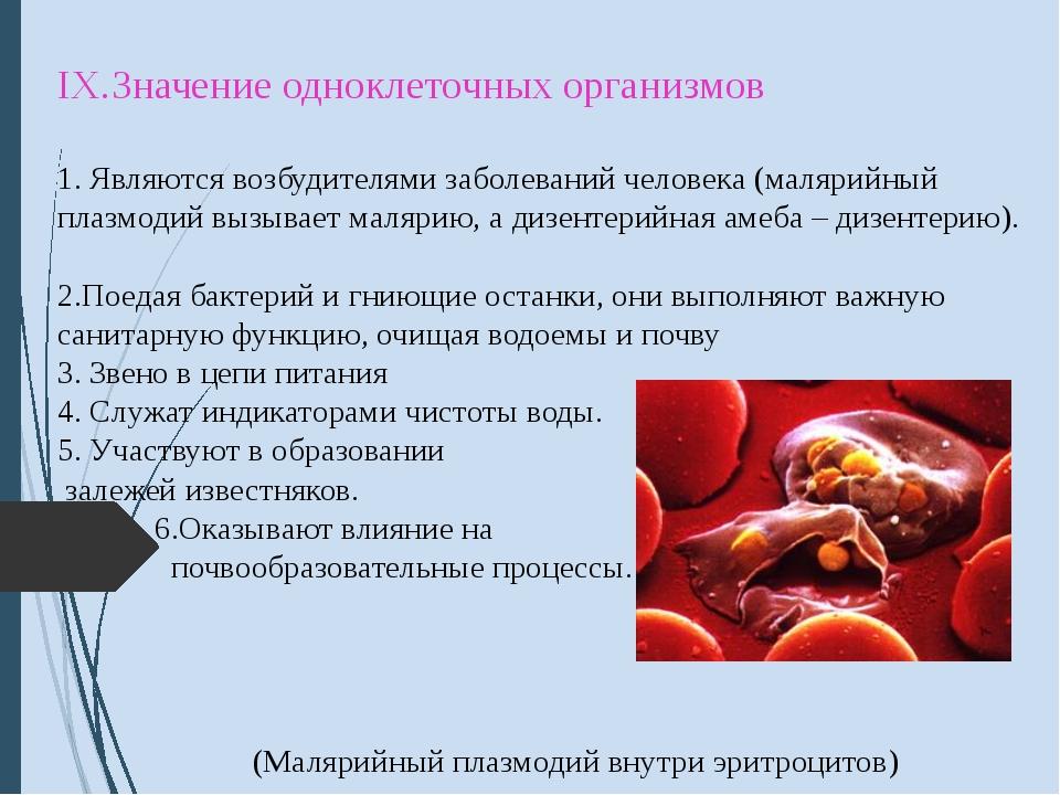 IX.Значение одноклеточных организмов 1. Являются возбудителями заболеваний ч...
