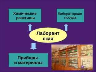 Лаборантская Химические реактивы Лабораторная посуда Приборы и материалы