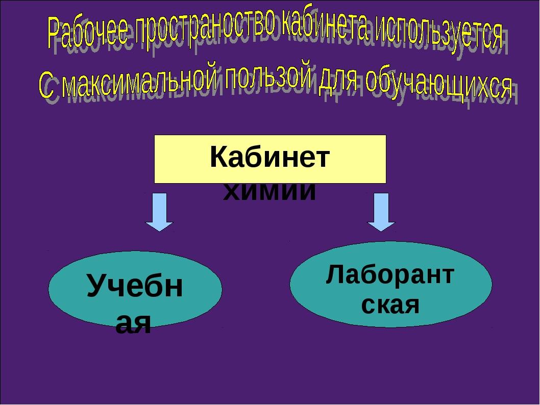 Кабинет химии Учебная Лаборантская